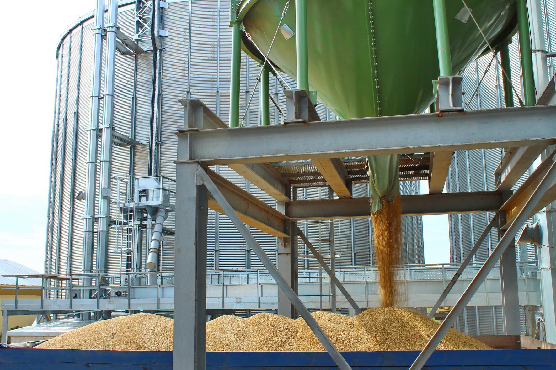 Элеватор зерно украина канатный став конвейера