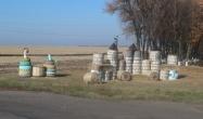 Щойно зібране поле кукурудзи біля в'їзду на територію ФГ