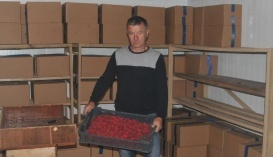 Андрей Ступинский, частный переработчик, Тернопольщина