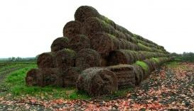Биоэнергетика в АПК
