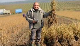 Юрій Качунь, керівник ягідного напрямку ПП «Агроспецгосп» і директор ТОВ «Агропромсад»