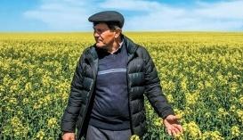 Юрий Яловчук, директор хозяйства «ООО «Колос»