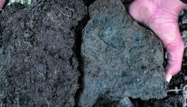 Слева — оптимальная структура почвенных агрегатов, справа — почва нуждается в разрыхлении