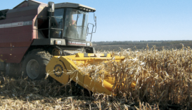 Жатка кукурузная ЖК-80
