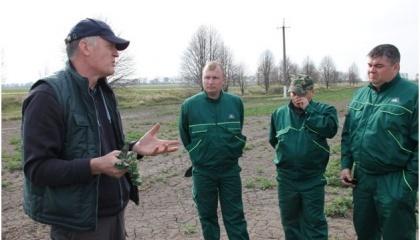 Григорій Колісниченко,  регіональний менеджер із агрономічної підтримки південно-західного регіону DuPont Pioneer Україна, проводить майстер-клас із визначення стану ріпаку після перезимівлі