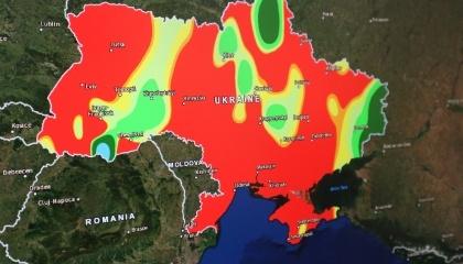 Приклад інформації, яку можна отримати з космосу: карта вологості грунтів