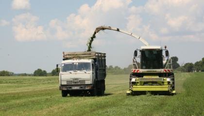 технологія вирощування люцерни