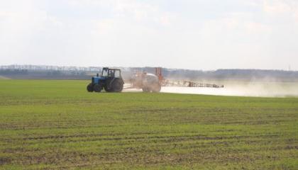 Борьба с сорняками гербицидами