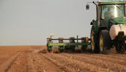 підготовка грунту до сівби сорго