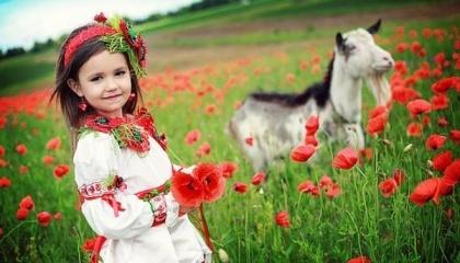 Украина может конкурировать только там, где имеет уникальные природные или экономические условия, которые позволяют иметь более высокую эффективность агропроизводства, чем у европейцев и, тем самым, компенсировать разрыв в уровне господдержки
