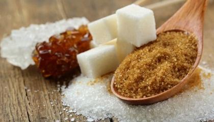 Резервы Винничины как по изготовлению сахара, так и патоки, свекловичных выжимок, биоэтанола из сока сахарной свеклы удивительно большие