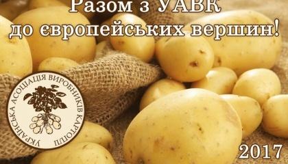 Українська асоціація виробників картоплі разом із голландськими колегами проводить дослідження ринку картоплі в Україні та сусідніх країнах, аби визначитися, яка саме продукція потрібна на експорт і для внутрішнього споживання в найближчі роки