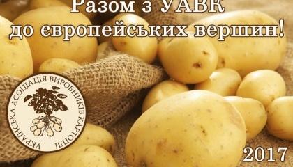 Украинская ассоциация производителей картофеля вместе с голландскими коллегами проводит исследования рынка картофеля в Украине и соседних странах, чтобы определиться, какая именно продукция нужна на экспорт и для внутреннего потребления в ближайшие годы
