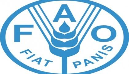 Керівний орган Міжнародної конвенції з карантину та захисту рослин (МКЗР), Комісія з фітосанітарних заходів (КФМ) прийняла новий глобальний стандарт торгівлі, який допоможе забезпечити безпечнішу і одночасно вигідну міжнародну торгівлю рослинами та насінням
