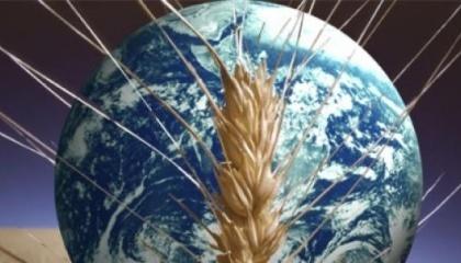 Проблема голода в мире станет менее острой, благодаря развитию технологий, логистике и деятельности транснациональных компаний