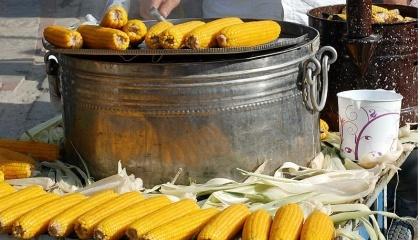 Солодка кукурудза є нишевою для дуже малого фермера. На 1 га фермер може отримати до 100 тис. грн прибутку
