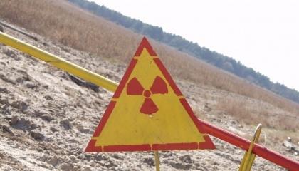 Фосфор и калий помогают уменьшить загрязнение растений радиоактивными изотопами