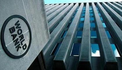По подсчетам Всемирного банка, ежегодно этот рынок может приносить $15-20 млн