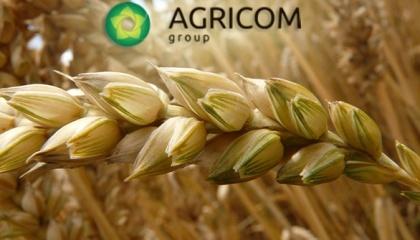 Аgricom Group в конце лета 2017 г. завершит в Черниговской области строительство завода по производству хлопьев