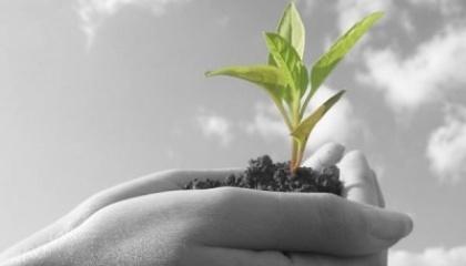 Головні питання - як  досягти зростання агропромислового бізнесу та протидіяти рейдерству, як вирішувати проблеми правової та податкової політики, управляти земельним банком агропідприємництва