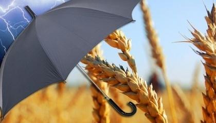 Эксперты проекта IFC предложили Минагрополитики концепция создания новой модели агрострахования в Украине