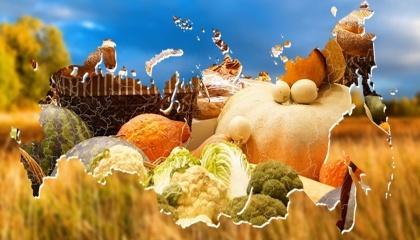 Україна зібрала в 2016 році найбільший урожай зернових за період незалежності - 66 млн т, що вище минулорічного майже на 6 млн т