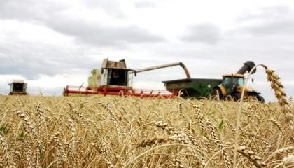 Виробництво продуктів харчування і агробізнес будуть основними драйверами світової економіки