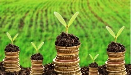 Рентабельність сільського господарства, за підрахунками Держстату, становить 30-32%, тому фермери і агрохолдинги можуть платити 10-20 тис. на рік за оренду кожного гектара