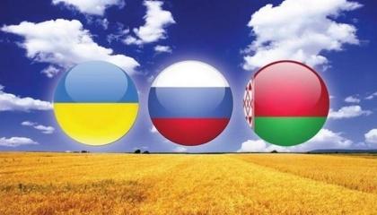 Головна стаття доходу Білорусії на транзит пов'язана з тим, що Росія з 1 січня 2016 року заборонила ввезення сільськогосподарської продукції, сировини і продовольства, країною походження яких є Україна