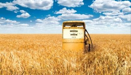 Аграрії повинні стати основними постачальниками біопалив аграрного походження - солома, стебла кукурудзи, лушпиння соняшника, і т.д., і спеціально вирощених енергетичних культур - верба, тополя, міскантус
