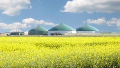 Аналіз статистичних даних для тваринницьких і птахівничих підприємств України свідчить, що в діапазоні потужності 30–190 кВт на свинофермах можна збудувати щонайменше 370 біогазових установок
