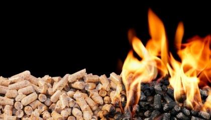 Хоча тепло з біомаси обходиться споживачеві на 10% дешевше, ніж тепло газових ТЕЦ, навіть цей фактор мало сприяє розвитку біоенергетики