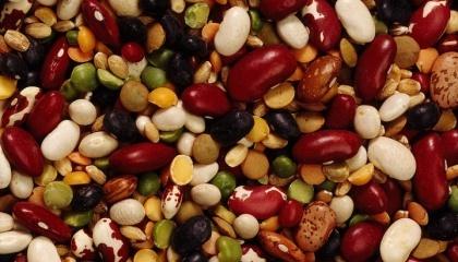 Производство зернобобовых в Украине составил 876,6 тыс. т в 2016 году. Из них: горох - 746,2 тыс. т, фасоль-53,6 тыс. т, люпин сладкий - 30,4 тыс. т, вики - 23,8 тыс. т, нут - 6,5 тыс. т, чечевица - 2,8 тыс. т