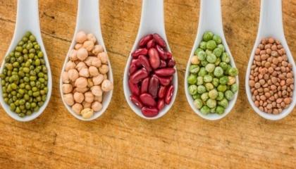 Ціни на сировинних ринках на бобові культури рости не будуть, принаймні до 2023-2025 року