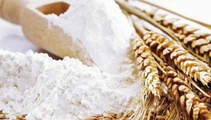 Достаточно успешными могут быть переговоры производителей с супермаркетами или дистрибьюторами о поставках органического муки, мучных смесей, муки из разных видов зерна (спельты, ржи), и муки для производства определенных видов продукции к примеру для пиццы и пасты