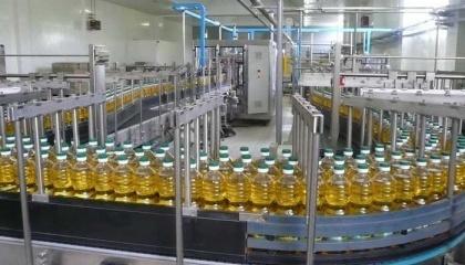 Географія експорту бутильованої соняшникової олії досить обширна і за підсумками 2016/17 сезону налічує понад 100 країн