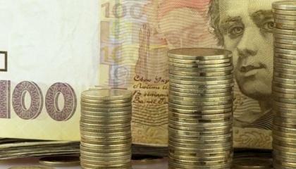 Незважаючи на багаторічну практику держпідтримки АПК в Україні на основі податкових пільг і бюджетних програм, на думку фахівців ОЕСР, підтримка АПК в Україні в останні роки негативна