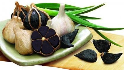 Господарство «МР Гарлік» (місто Дніпро) вперше в Україні започаткувало виробництво чорного ферментованого часнику