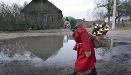 Тридцяти кілометрова зона відчуження навколо Чорнобильської АЕС може отримати нове життя. Наразі у Міністерстві екології розглядають варіант передачі землі в оренду для будівництва сонячних електростанцій