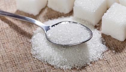 Suedzucker збільшив прибуток на 30% на тлі вищих доходів від виробництва цукру та біопалива