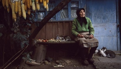 Із 2,5 млн українських мігрантів, які виїхали за кордон протягом 2014-2016 років жителі сільської місцевості становлять 40%. Загалом протягом останніх 25 років сільська місцевість втратила 3,5 млн осіб, з карти України за цей період стерто понад 600 сіл, 369 знелюднені