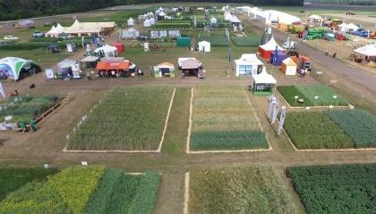 На Днях поля представлено понад 100 підприємств, зайнятих в аграрному секторі, з восьми країн світу - США, Великобританії. Італії, Ізраілю, Франції, Німеччини та України