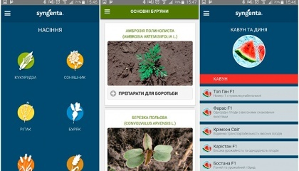 """Бесплатное приложение для профессионалов аграрного сектора """"Syngenta Украина"""" существует с 2013 года и постоянно совершенствуется"""