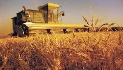 Проблема недополучения аграриями дотаций возникает из-за того, что формула расчета выплаты, которую используют Минфин и ДФС, не соответствует закону «О государственной поддержке сельского хозяйства»