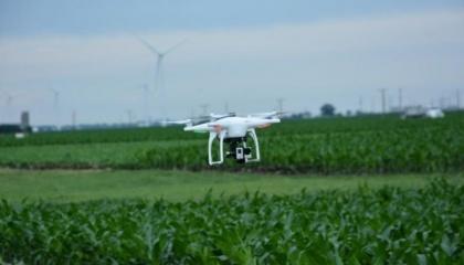 Если селекционеры смогут сэкономить время и усилия, используя дроны в своей работе, новые сорта могут быть выведены и предоставлены фермерам в разы быстрее