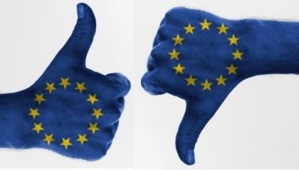 Французские и немецкие фермеры призывают ЕС возобновить лицензию на глифосат