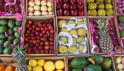 овощи и фрукты египет