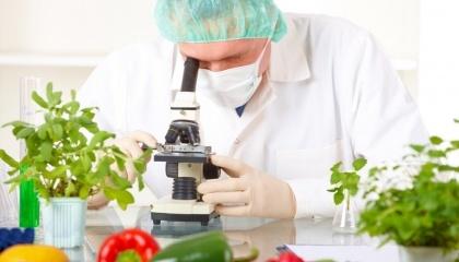 Нина Кильдий: штрафные санкции или запреты в отношении недобросовестных производителей являются действенным механизмом в борьбе за повышение качества продукции