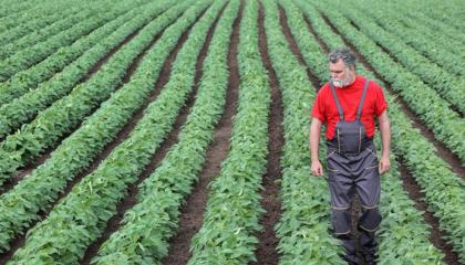 Минагропрод разрабатывает модель поддержки малых и средних производителей через программы школьного питания