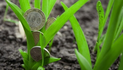 Для небольших и средних компаний есть альтернативные источники финансирования - финансирование до урожая и после него